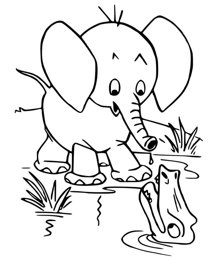 Раскраска слон и крокодил